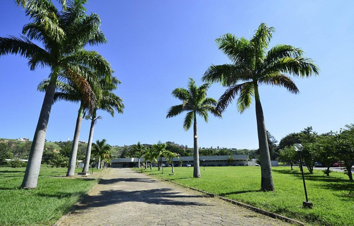 Case: Clínica Fazenda Palmeiras